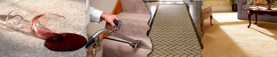 carpet cleaning  TRIBECA